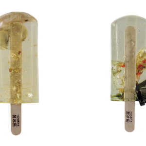 Polluted Water Popsicles Project